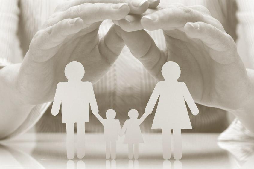 Neue Broschüre: Vitalpilze für ein gesundes Immunsystem