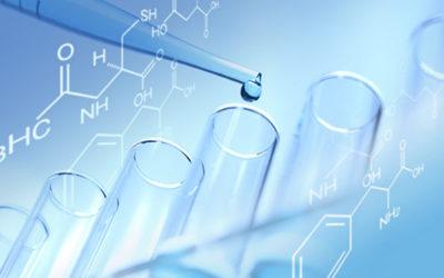 Studie zeigt: Mit Schwermetall belastete Pilze.